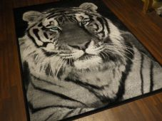 Modern Approxx 6x4ft 120x170cm Tiger Face Rugs Top Quality Grey/black Blue eyes